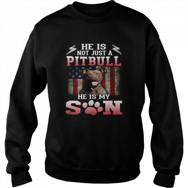 He Is Not Just A Pitbull He Is My Son American Flag  Unisex Sweatshirt